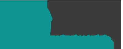 logo-vdl.png